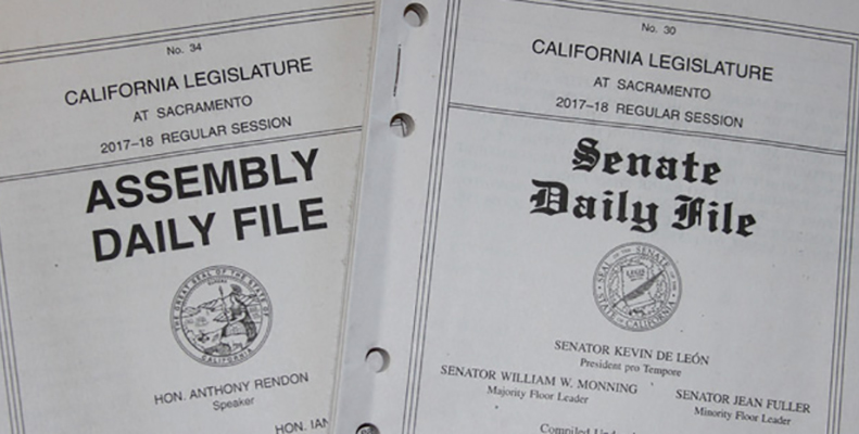 Assembly and Senate Daily File Books