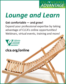 CLCA online - lounge and learn