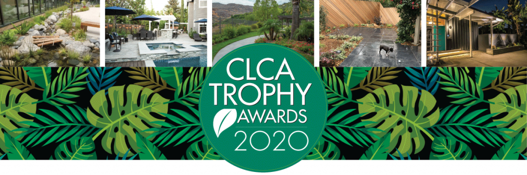 Trophy Award 2020 web header
