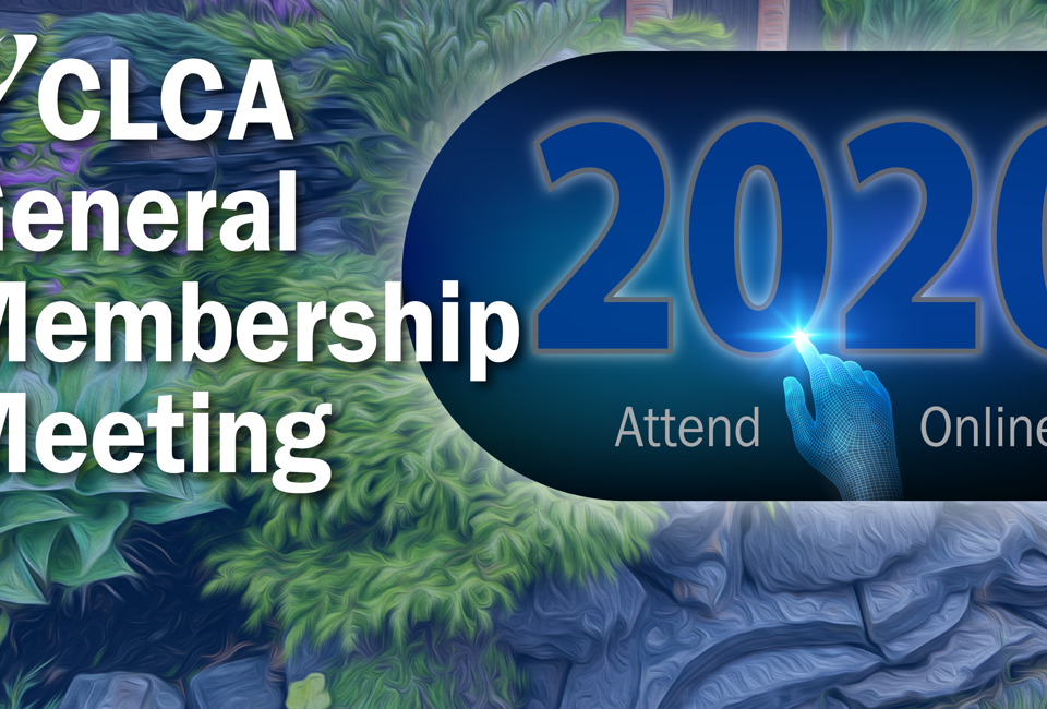 CLCA 2020 Membership Meeting promo